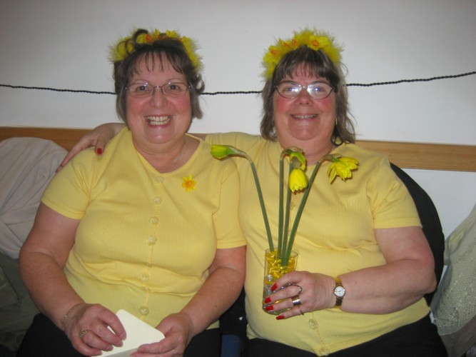 Photo daffodilevening010.jpg